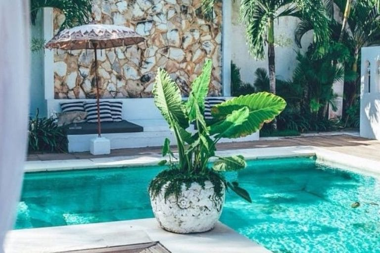 Instagardens Landsdale Pool Design Landscaping